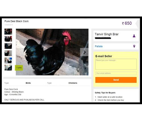 6 Funniest Items Ever Found on OLX Website
